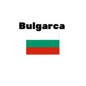 Bulgarca çeviri