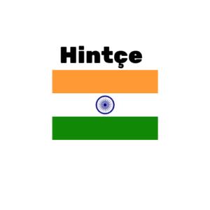 Hintçe çeviri