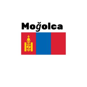 Moğolca çeviri