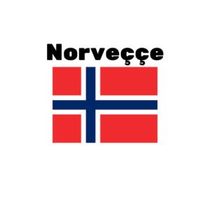 Norveççe çeviri
