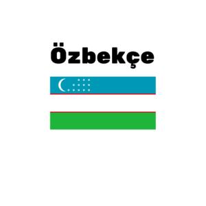 Özbekçe çeviri