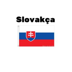 Slovakça çeviri