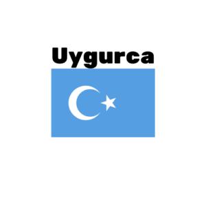 Uygurca çeviri