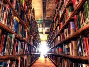 akademik çeviri hizmeti